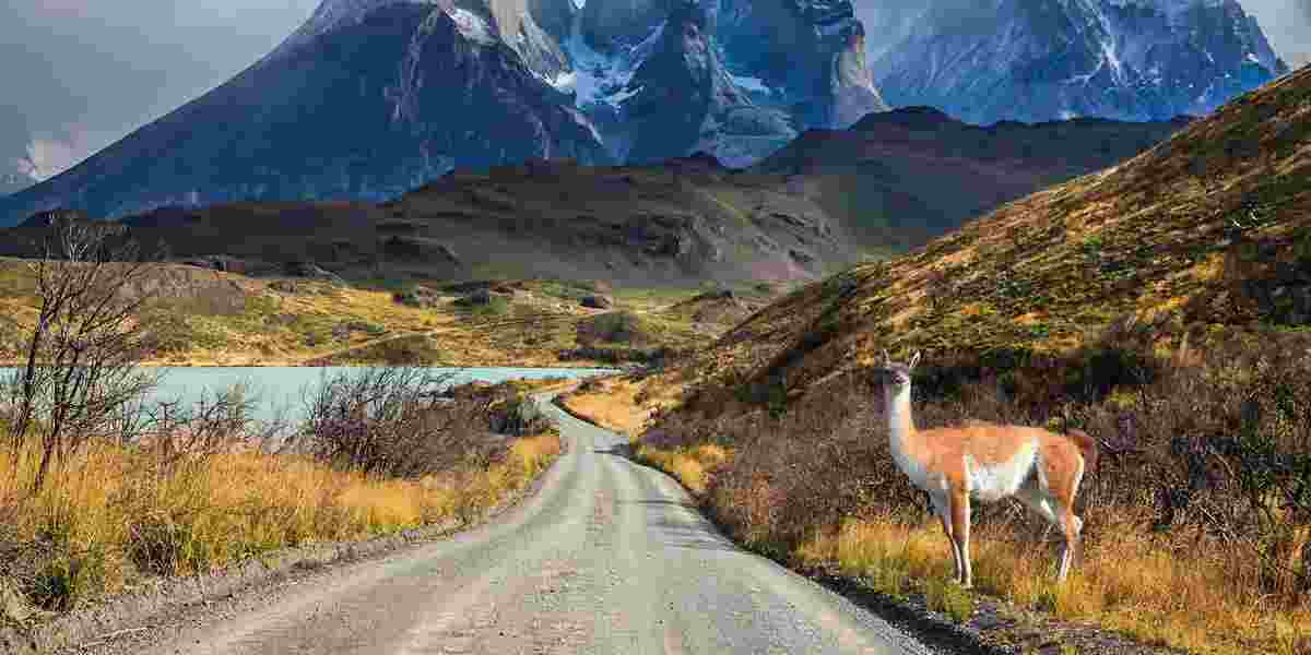 Best Of Chile From Atacama To Patagonia