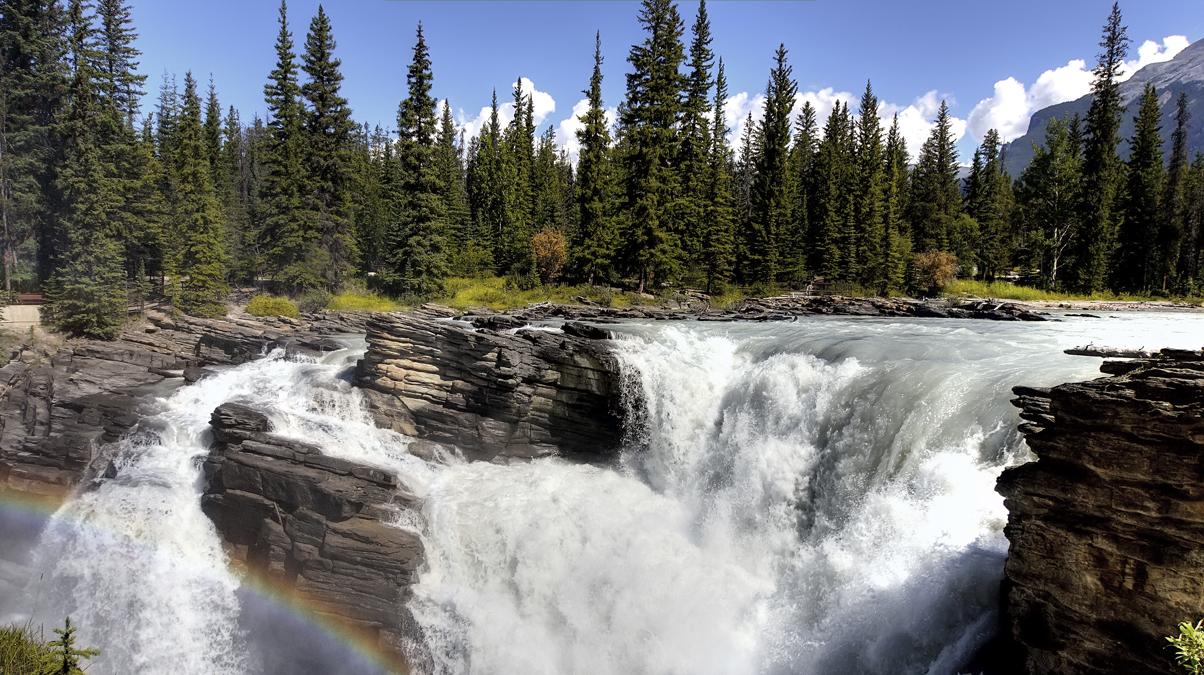 Athabasca Falls © hinzundkunz iStock