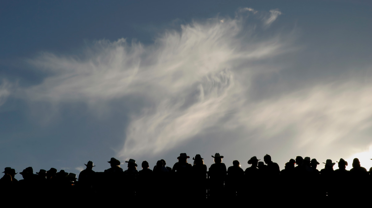 cowboy-silhouette-by-icam-WHERE IS THIS IMAGE FROM_