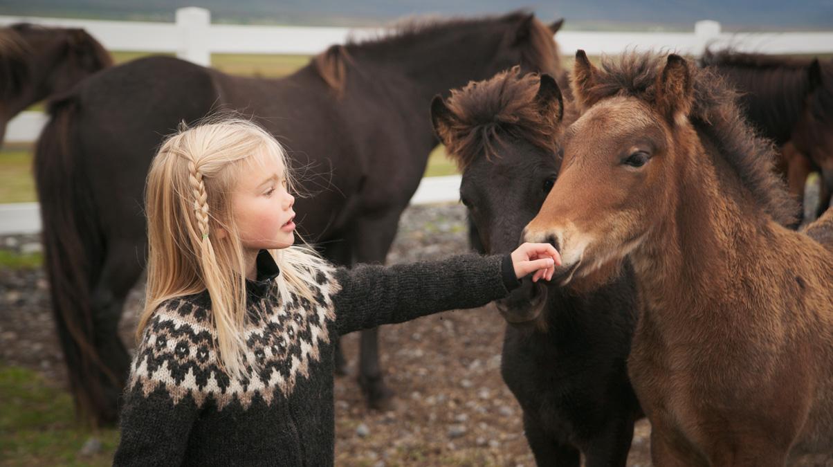 Icelandic-girl-and-pony-iStock-wanderluster-www.istockphoto