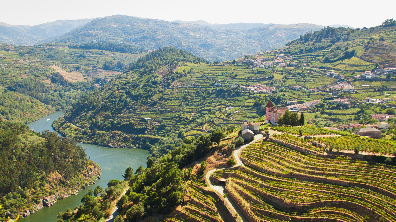 iStock_000048492604_Large.jpg www.istockphoto.com:photo:vineyards-ribeira-do-douro-gm517197377-48492604_st=2905071