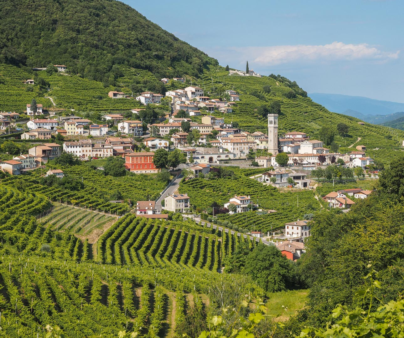 Valdobbiadene town and vineyard